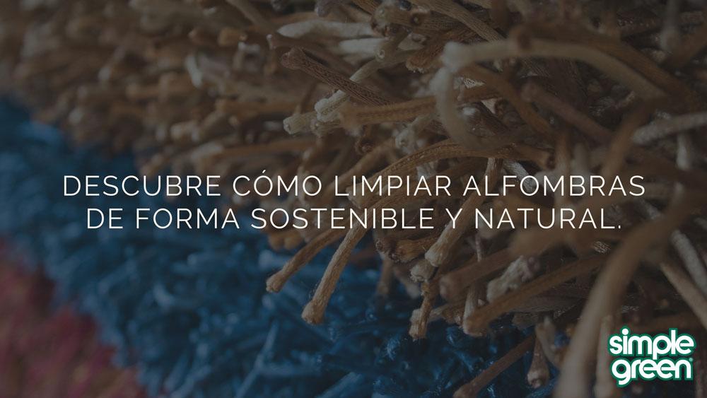 Descubre c mo limpiar alfombras de forma sostenible y natural simple green hogar - Como limpiar alfombras ...